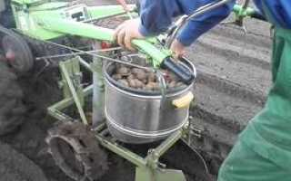 Картофеле копалки тракторные своими руками чертежи