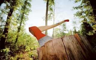 Какие мышцы работают при колке дров
